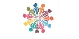 Ferramentas da educación social ao servizo da normalización lingüística. Santiago de Compostela