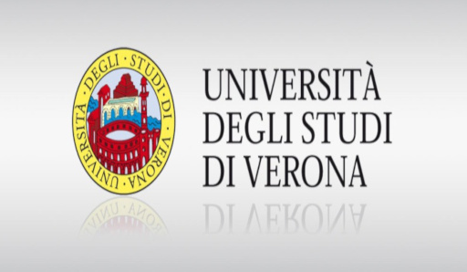 16th Old World Conference on Phonology (OCP XVI). Verona (Italia)