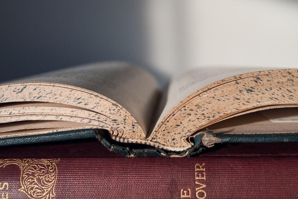 Atopan unha tradución ao irlandés descoñecida do Canon de Avicena