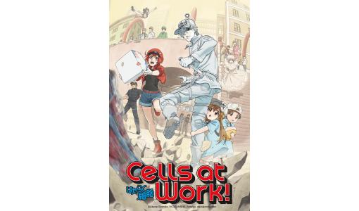 """A serie anime """"Cells at Work!"""" terá subtítulos en galego, éuscaro e catalán"""