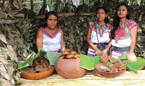 Máis de seis millóns de persoas falan en México unha lingua indíxena
