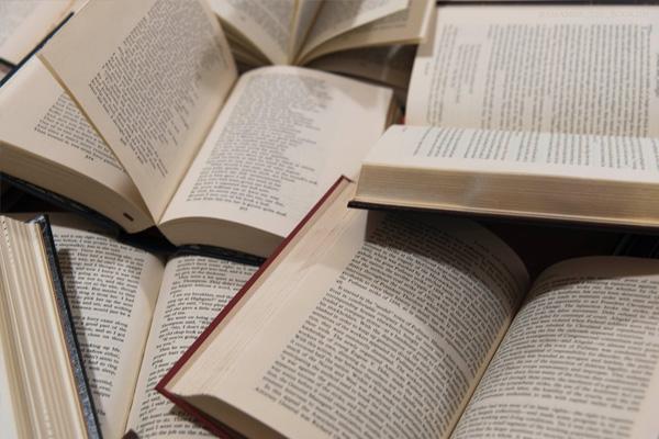 A segunda edición do Diccionari de la llengua catalana incorpora 14 novas palabras e case 200 modificacións